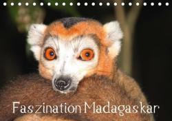 Faszination Madagaskar 2018