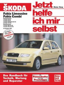 VW Sharan / Ford Galaxy / Seat Alhambra. Jetzt helfe ich