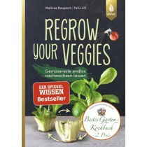 Regrow your veggies