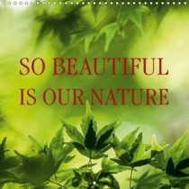 So beautiful is our nature (Wall Calendar 2019 300 × 300 mm Square)