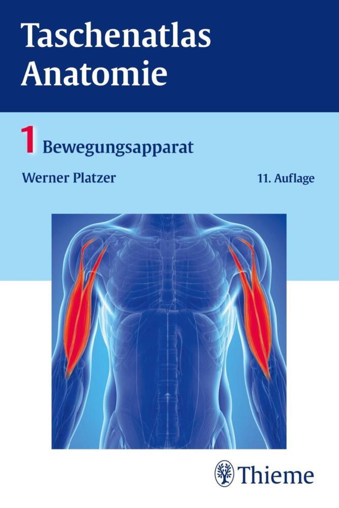 Platzer, W: Taschenatlas Anatomie 1 Bewegungsapparat von Platzer ...