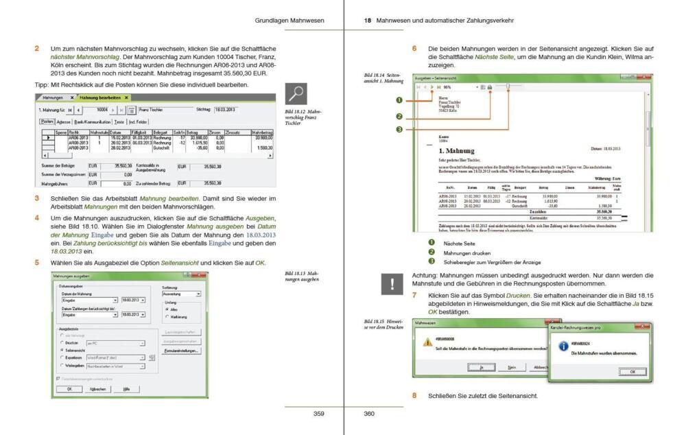 Lenz, G: Praxisnahe Finanzbuchhaltung mit DATEV - Von der Einführung ...