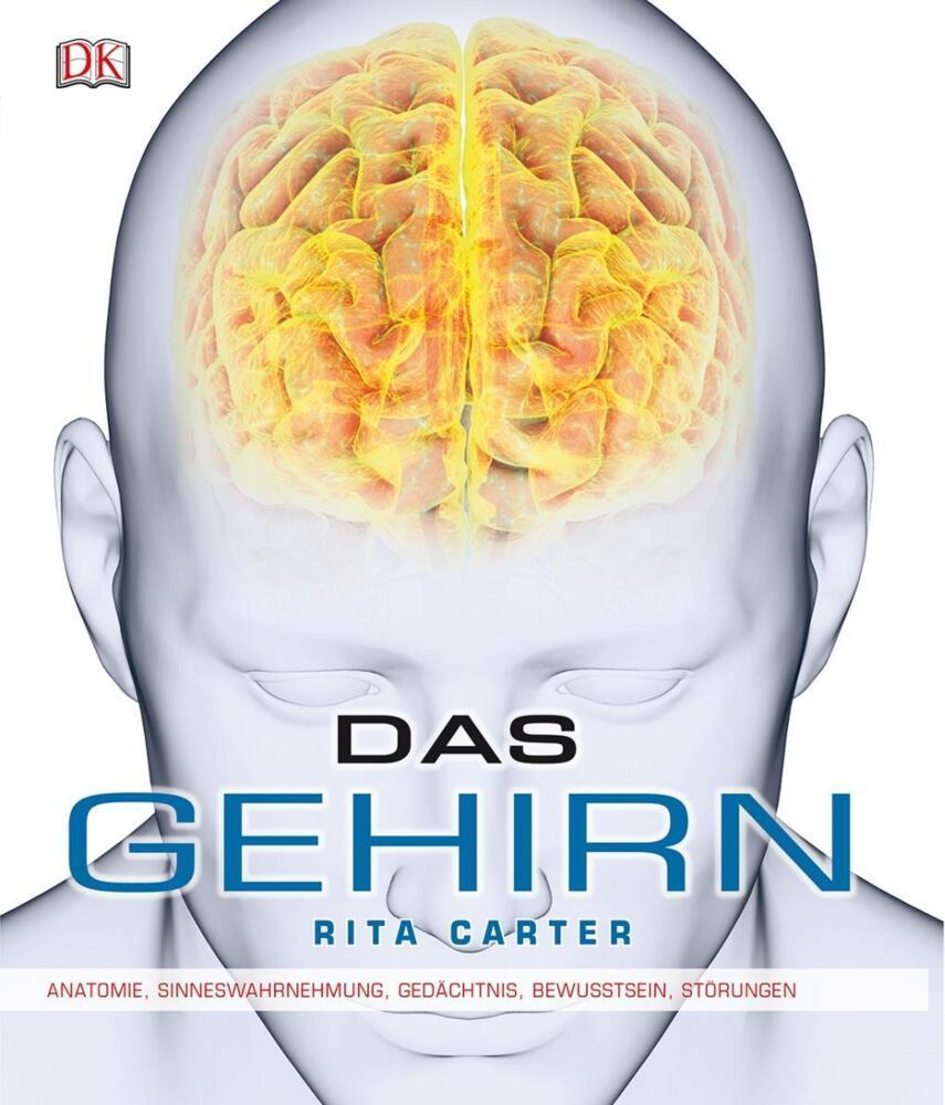 Das Gehirn - Anatomie, Sinneswahrnehmung, Gedächtnis, Bewusstsein ...