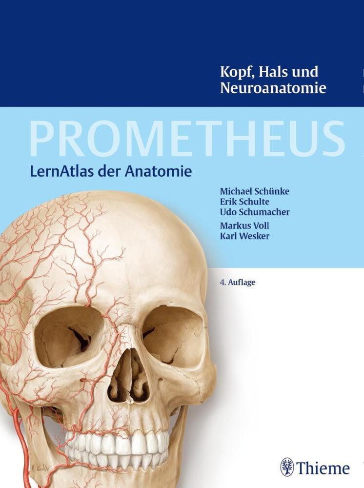 Schünke, M: PROMETHEUS Kopf, Hals und Neuroanatomie - LernAtlas ...
